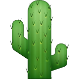 Cactus Emoji (Apple/iOS Version)