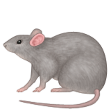 Rat Emoji (Apple/iOS Version)