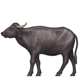 Water Buffalo Emoji (Apple/iOS Version)