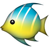 Tropical Fish Emoji (Apple/iOS Version)