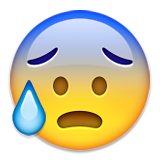 Face With Open Mouth And Cold Sweat Emoji (Apple/iOS Version)