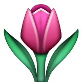 Tulip Emoji (Apple/iOS Version)